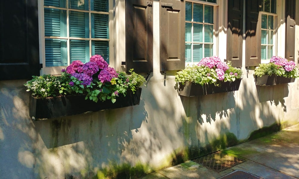 15 Homemade Window Box Plans You Can Build Easily
