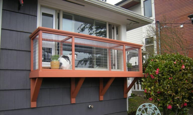 21 Cat Window Box Plans You Can Diy Catio Easily
