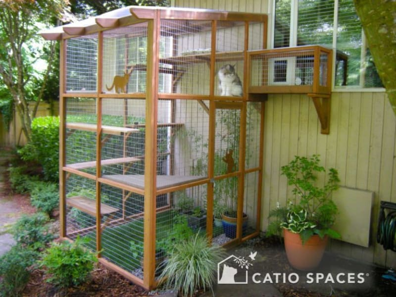 DIY catio plans and design ideas