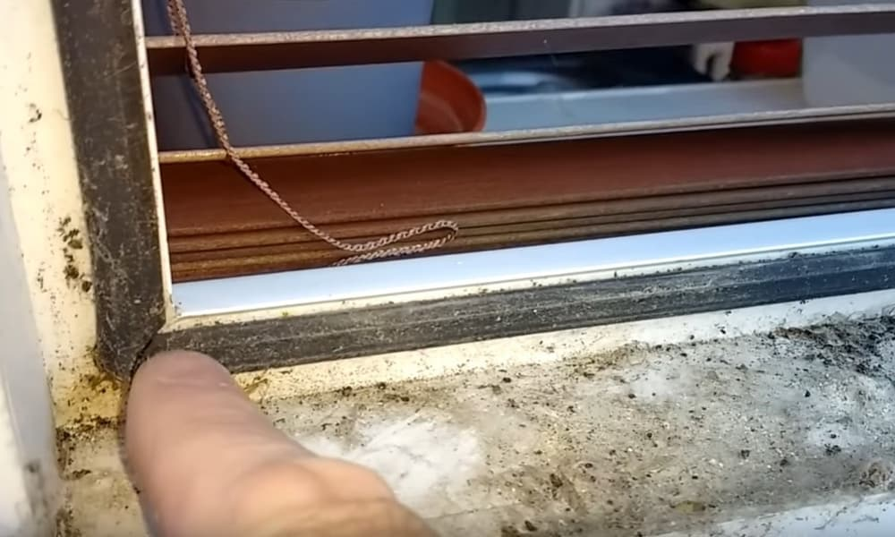 Top Reasons for window seal failure