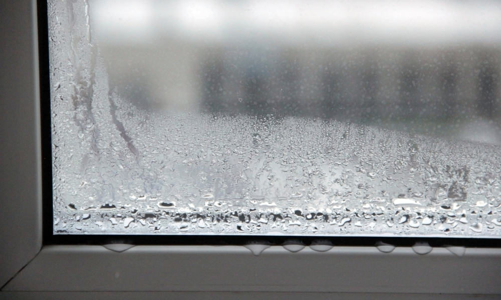 26 Tips to Prevent Condensation on Windows