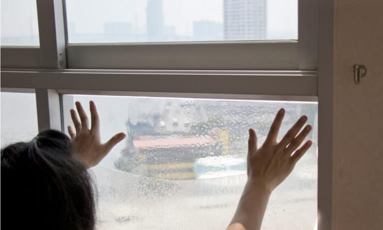 3 Ways to Remove Window Film 1
