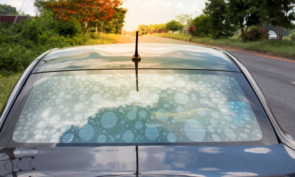 5 Tips to Remove Bubbles in Window Tint