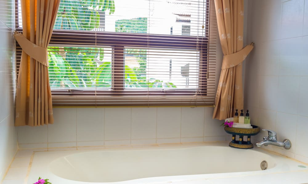 Bathroom Window Treatment