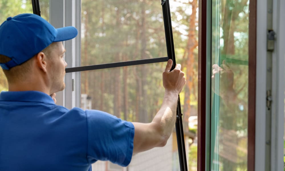 Removing Window Screens Based on Styles