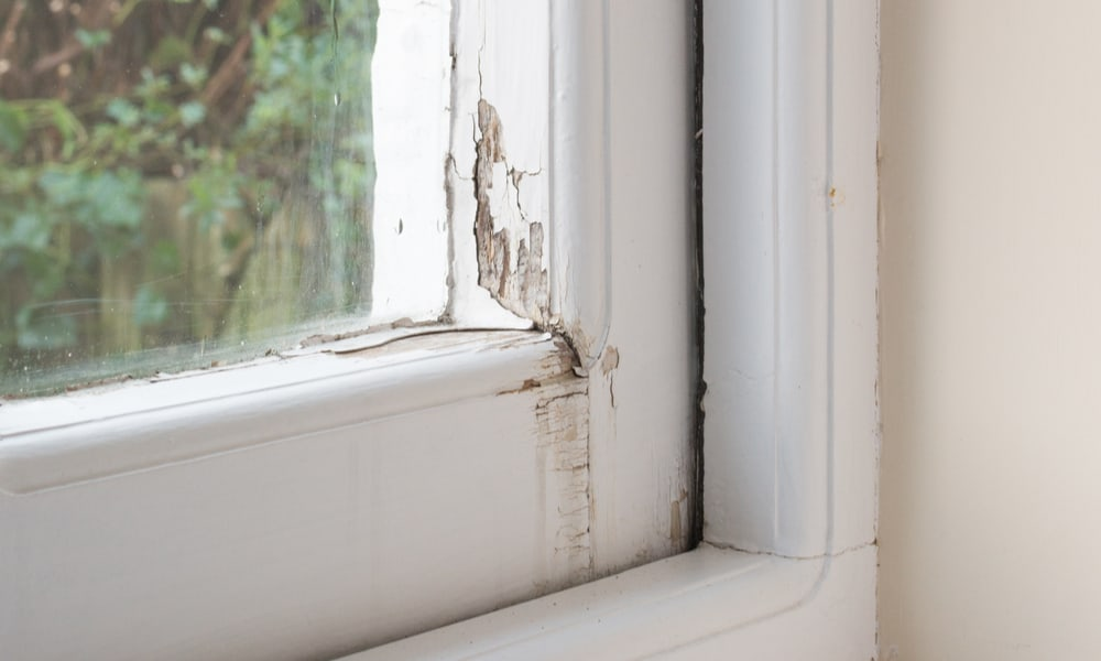 Rotting or damaged windows