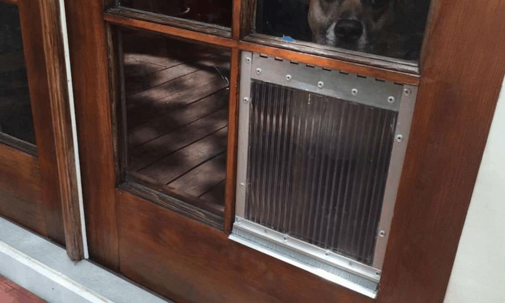 DIY Dog Door for French Door Windowpanes