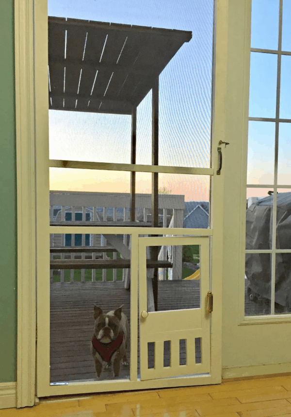 DIY Pet Door in a Screen Door