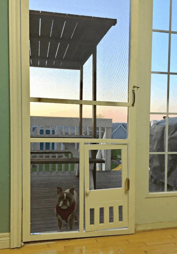 DIY Pet Door in a Screen Door