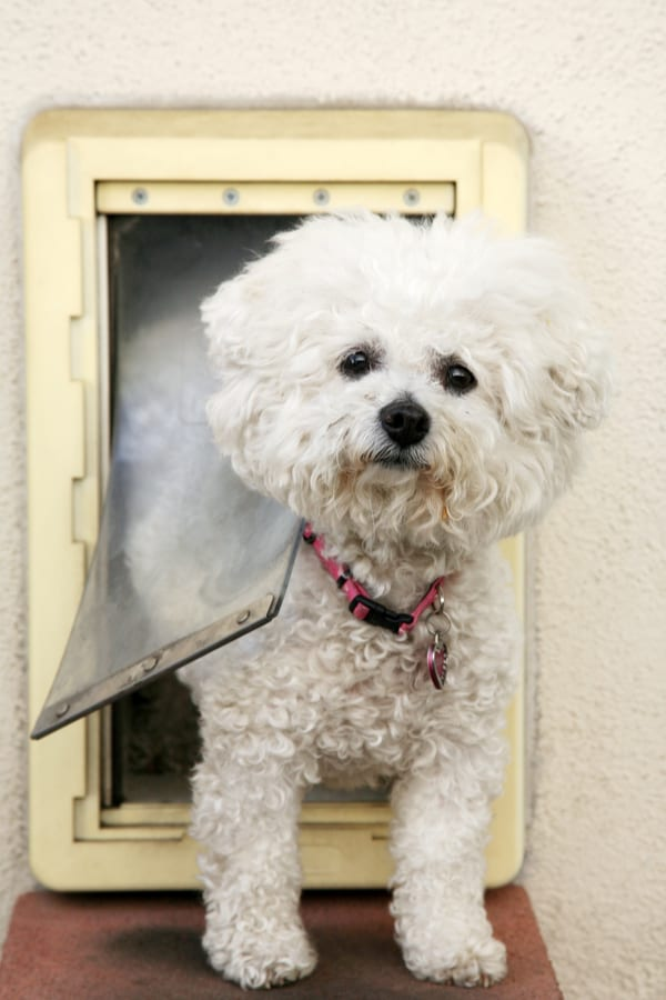 How to Build a Dog Door Flap
