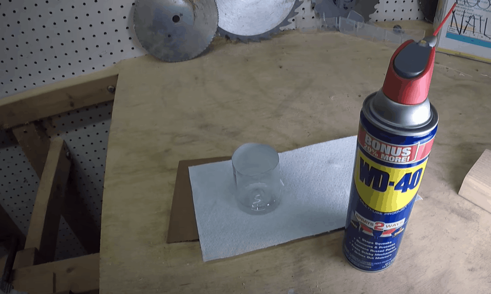 Apply Lubricant to the Squeaky Hinges