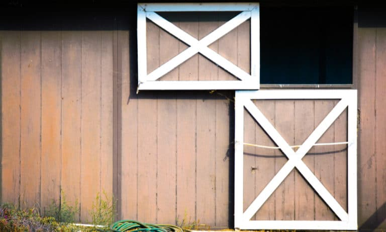 Dutch Door Everything You Need to Know
